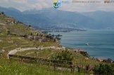 2015-05-27-Qispi-Jura_Leman-Lavaux-IMG_9232