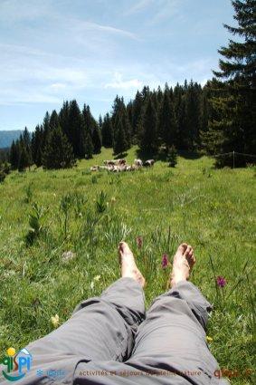 2015-05-28-Qispi-Jura_Leman-Hautes_Combes-IMG_9293