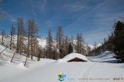 2014-13-11-Adus-IMG_4350