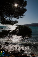 2012-04-07-Cassis-Calanques-IMG_8600