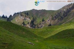 2015-05-25-Qispi-Jura_Leman-La_Dole-IMG_8985