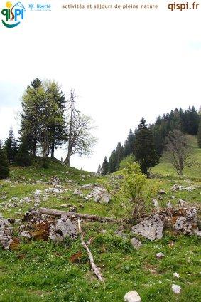 2015-05-25-Qispi-Jura_Leman-La_Dole-IMG_8990