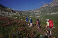 Dans les Rhododendrons en fleurs – Jour 3 – Tour du Marguareis – Juin 2016 – Trek, Rando, Italie