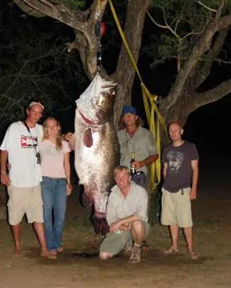 Queensland Fishing Charters Mackay Fishing