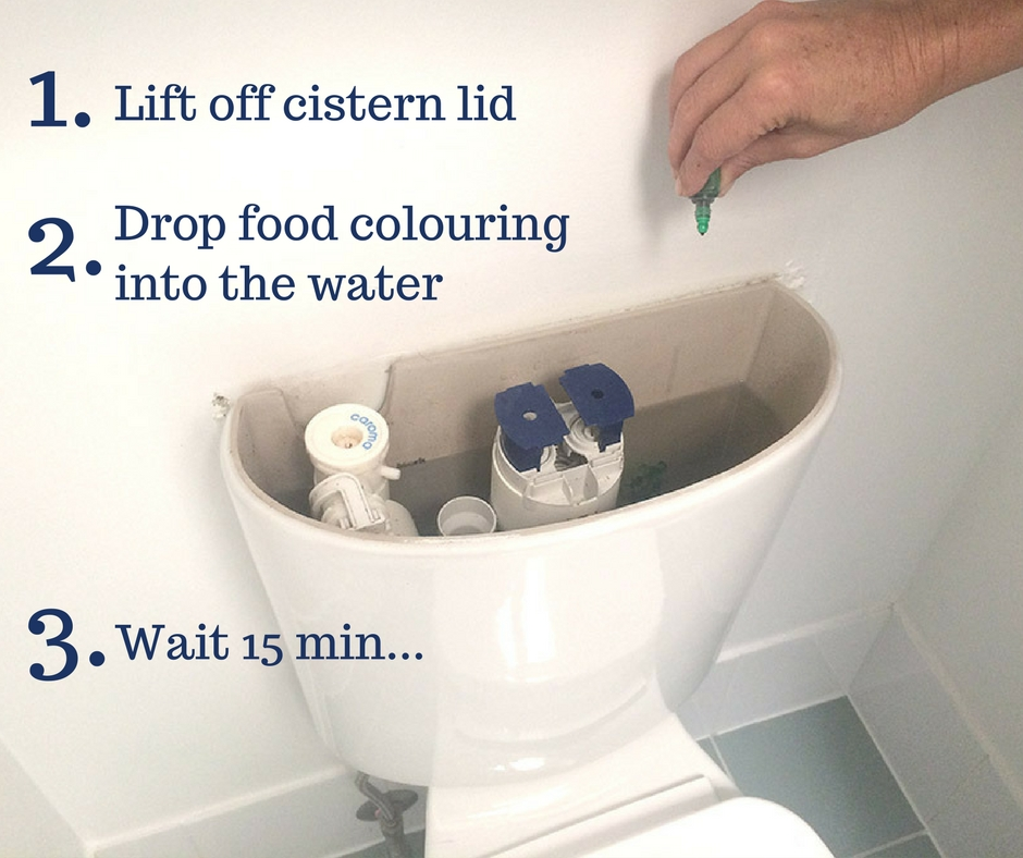 Instructions - how to drop food colour into your cistern