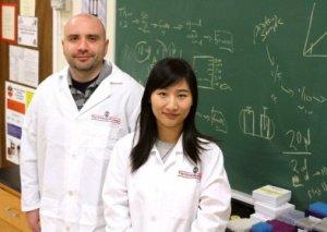 Rob Pazdro, izquierda, y Yang Zhou al frente del estudio que analiza una nueva vía por la que la genética regula el envejecimiento y la enfermedad. Crédito: Cal Powell / Universidad de Georgia