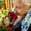 discriminación mayorescencia personas mayores