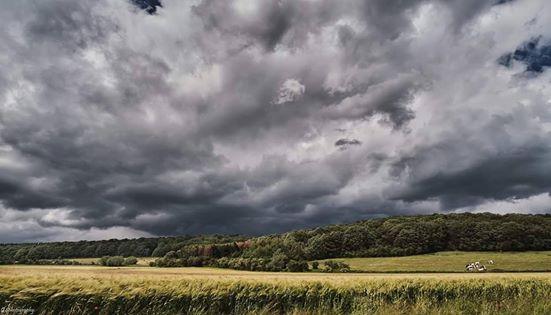Photographie de nature avec un ciel menaçant au dessus des champs de céréales