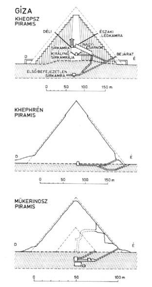közös kezelési piramis)