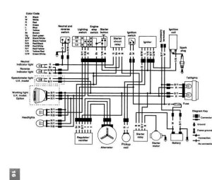 Kawasaki Kvf 300 Wiring Diagram  camizu