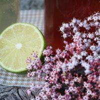 Rezept: HOLUNDERBLÜTEN SIRUP selbstgemacht #saisonaleRezepte #Holunder