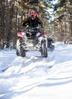 snow-5534