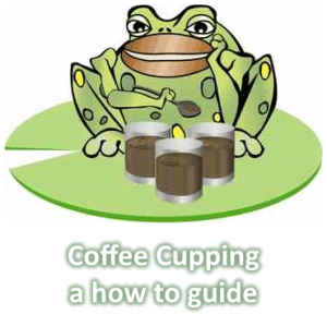 Coffee Cupping – how to guide