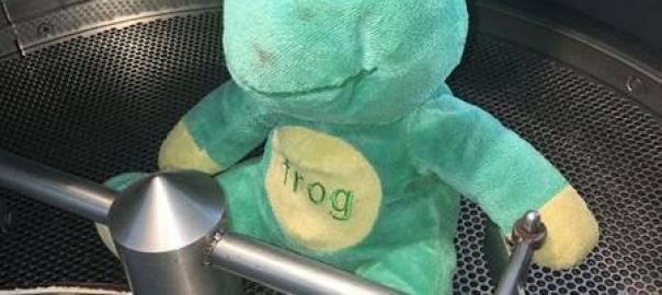 Coffee roasting process - Frog Q in cooling bin