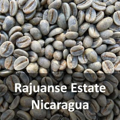 Green Nicuaraguan Rajuanse Estate