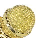Micro karaoké, fonction de changement de son de microphone sans fil pour la fête pour haut-parleur