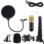 Microphone à condensateur, kit de micro à montage antichoc en métal pour chanteur pour les studios d'enregistrement