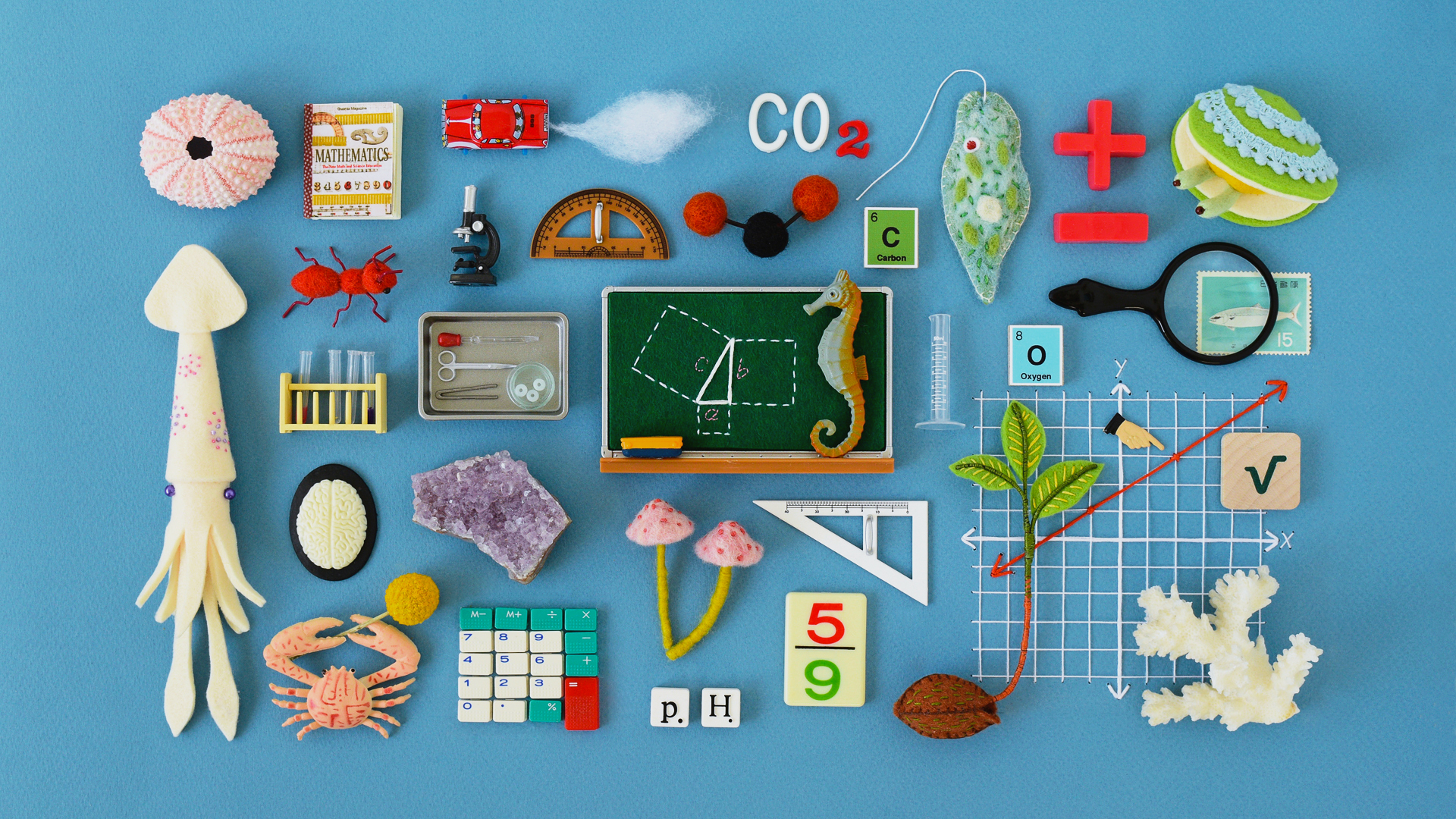 Math And Science Education