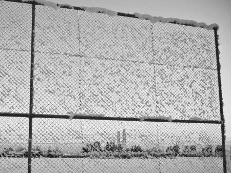 Gratuitous picture: frozen fence (Photo: Luis).