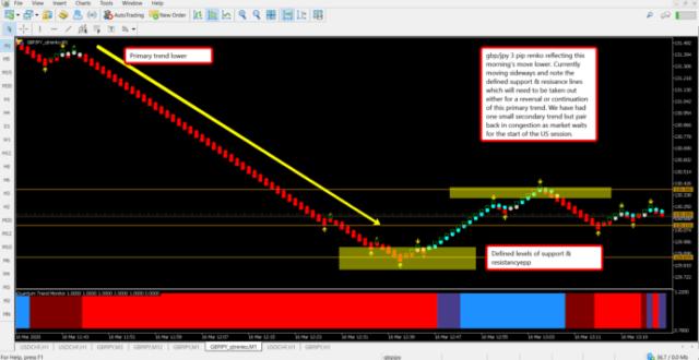 Are renko charts profitable? Most definitely!