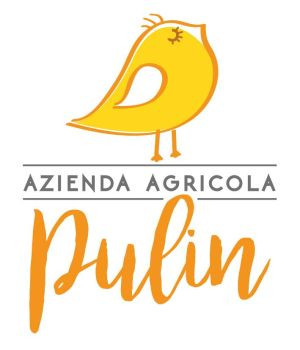 01pulin_logo