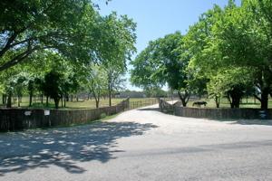01 Driveway 13C