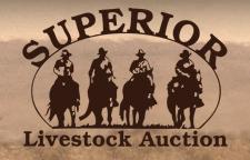 superiorlivestock logo