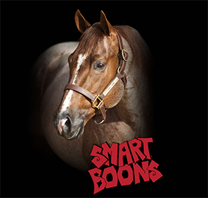 smart-boons