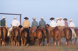 Waggoner-cowboys-web