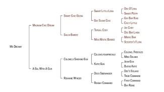 MsDreamy's pedigree chart