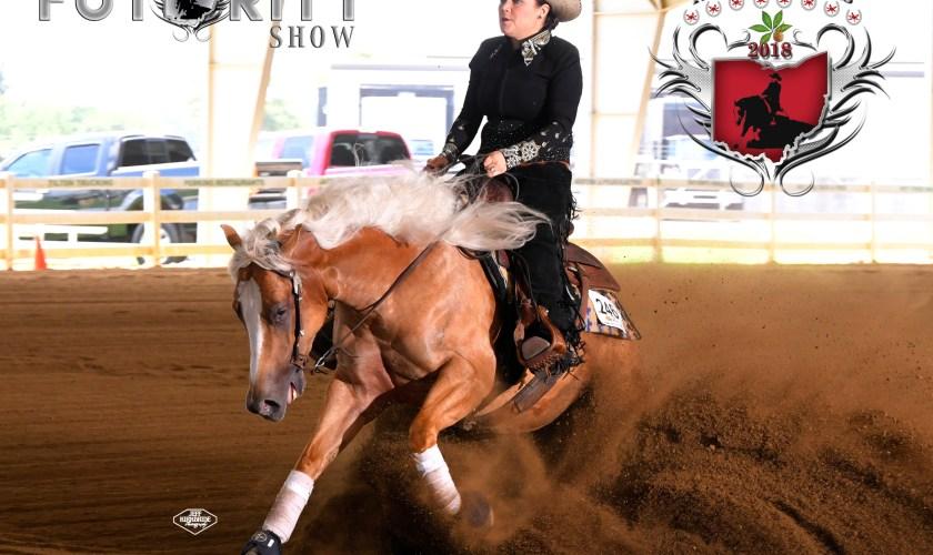 reining horse