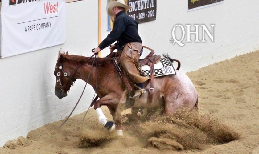 Horse sliding in the dirt