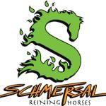 Schmersal logo