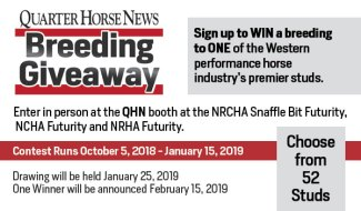 QHN stallion breeding giveaway