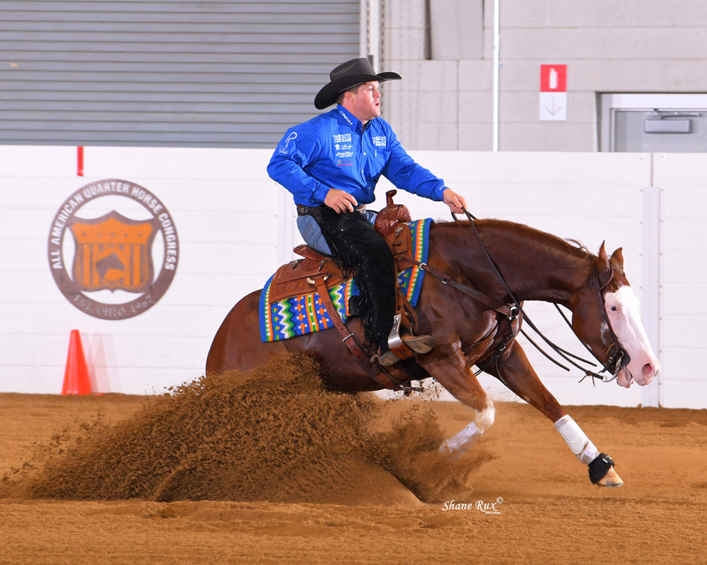 americas supermodel displays winning run at congress - quarter horse