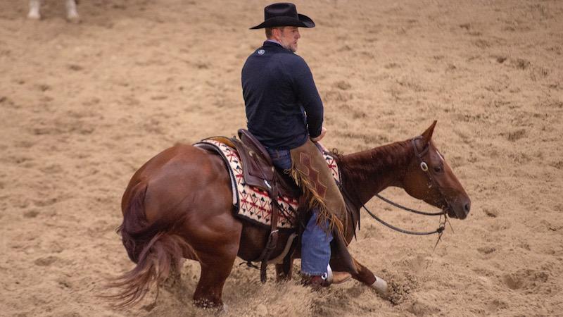 Shane plummer horseback