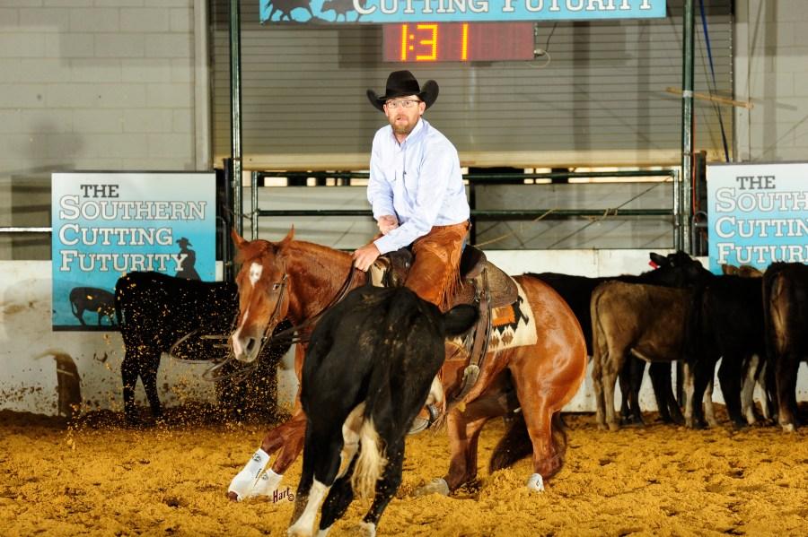 Stylish Hailee cutting horse