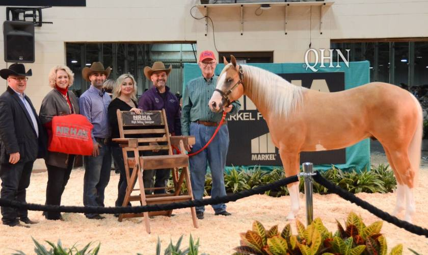 sale horse