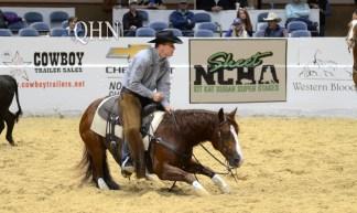 horse-rider