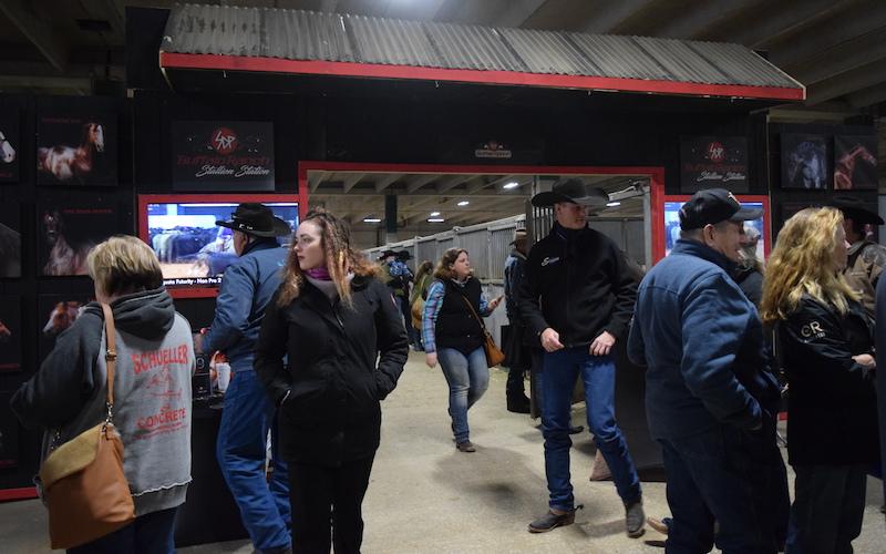 SDP Buffalo Ranch stallion stalls