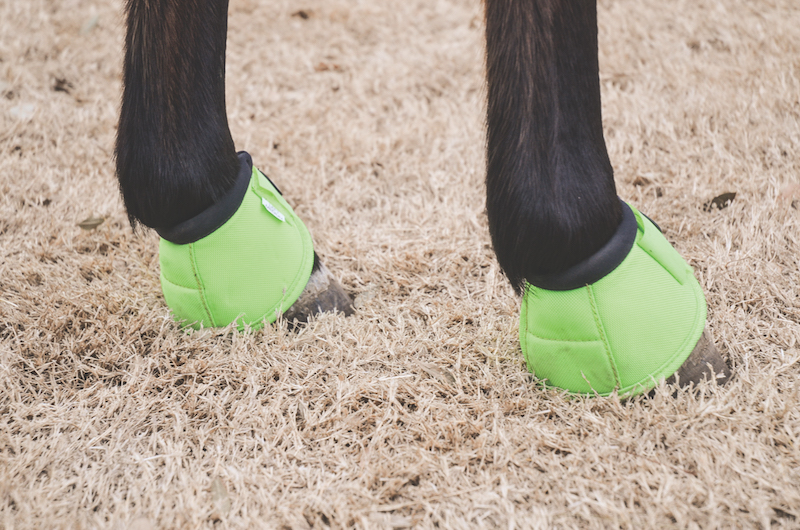 overreach boots on a horse's hooves