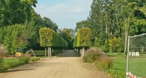 Am Hainbuchenweg im Schoßgarten von Dieburg