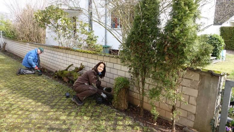 """In Schattendasein entsteht hinter dem Bürgertreff ein """"Waldbeet"""""""