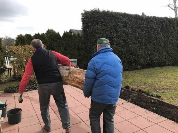 BT-Waldacker-Projekttag-19-03-2021-Natur-zurück-in-die-Stadt--Der-Baumstamm-bekommt-ein-neues-Zuhause