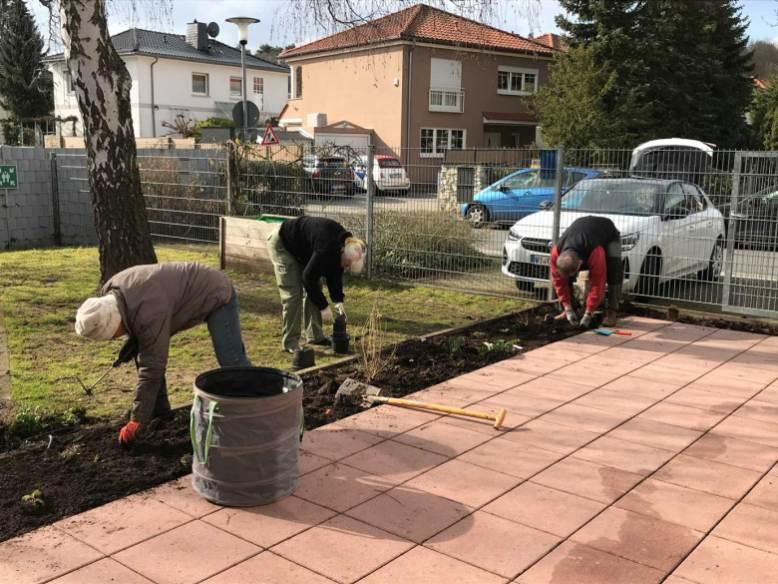 BT-Waldacker-Projekttag-19-03-2021-Natur-zurück-in-die-Stadt--Einpflanzung-der-Wildblumen-und-Stauden