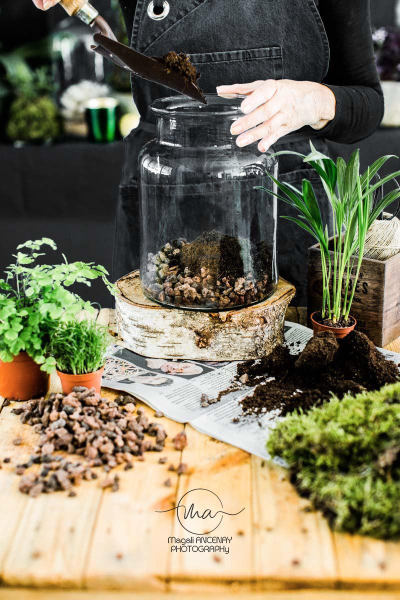 Comment Faire Un Terrarium Plante Grasse comment réaliser un terrarium - quatre saisons au jardin