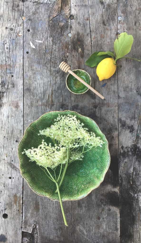 Fruits de saison au Sureau - Magali ANCENAY  Photographe Culinaire
