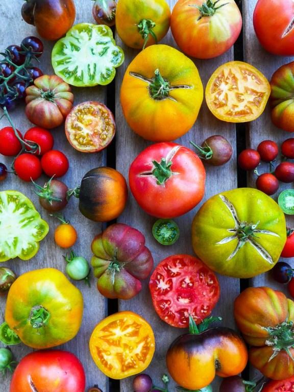 Mix de tomates anciennes 2017 - Magali ANCENAY