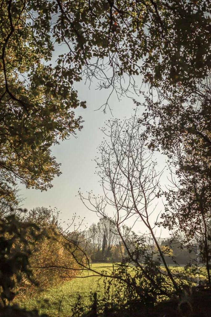 Balade sur Lauris Luberon - Magali Ancenay