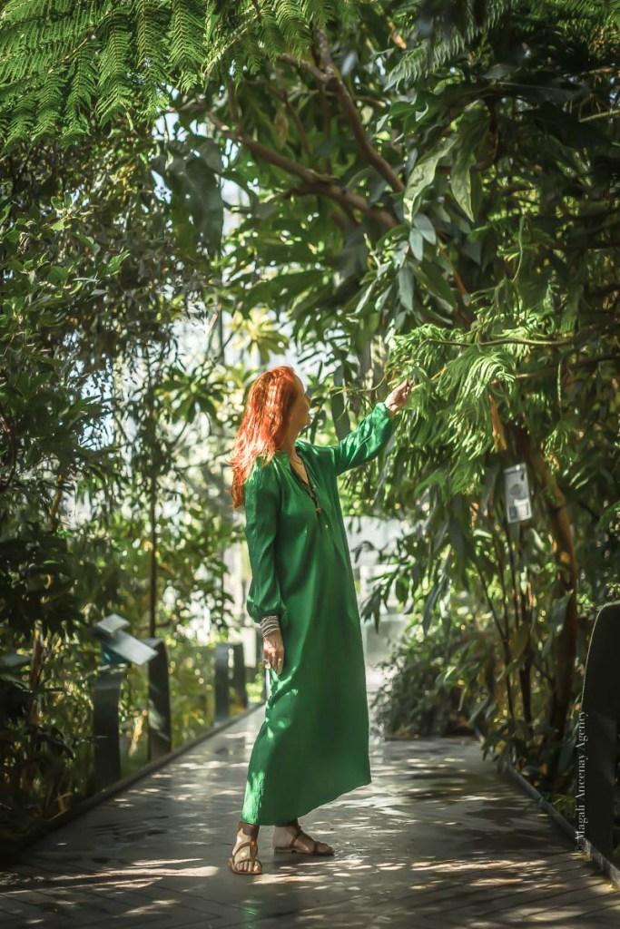 Visite au jardin des plantes - Magali ANCENAY-3